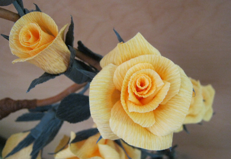 Yellow paper roses, Carzano by Judy Darley