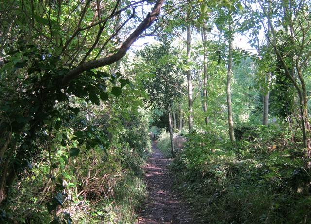 Country walk cr Judy Darley