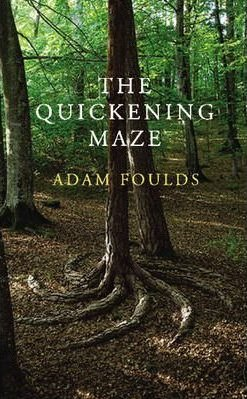 The Quickening Maze cover