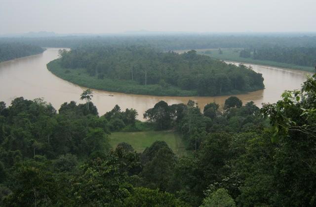 Kinabatangan River cr Judy Darley