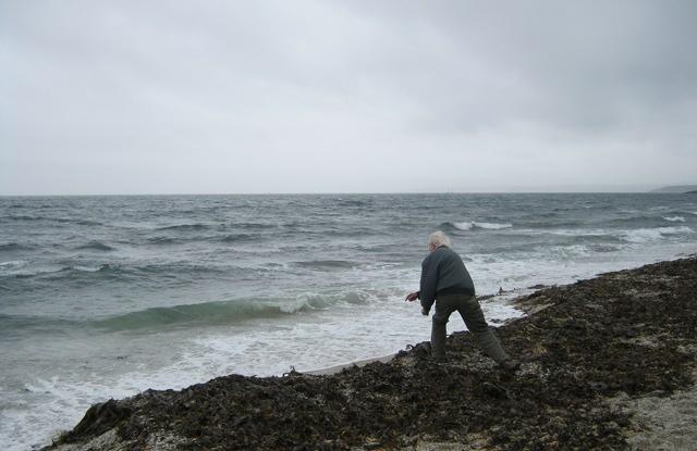 Man casting stones cr Judy Darley