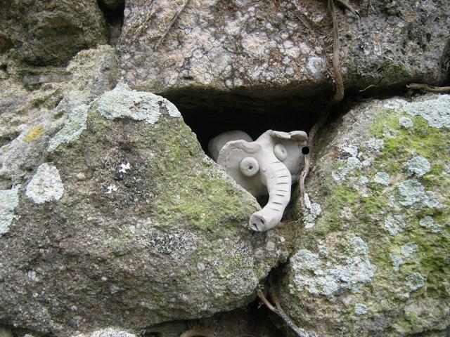 Elephant cr Judy Darley