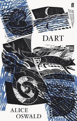 Dart cover