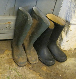 Wellies cr Judy Darley