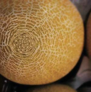 Melon Maze © Robert John.png