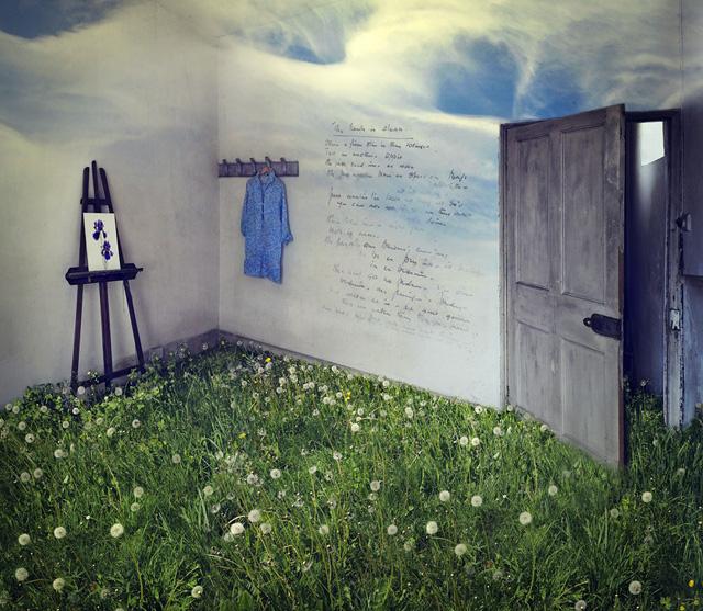 dandelions © Soraya Schofield