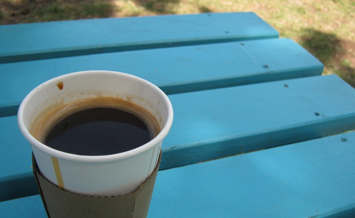 Coffee in the park cr Judy Darley