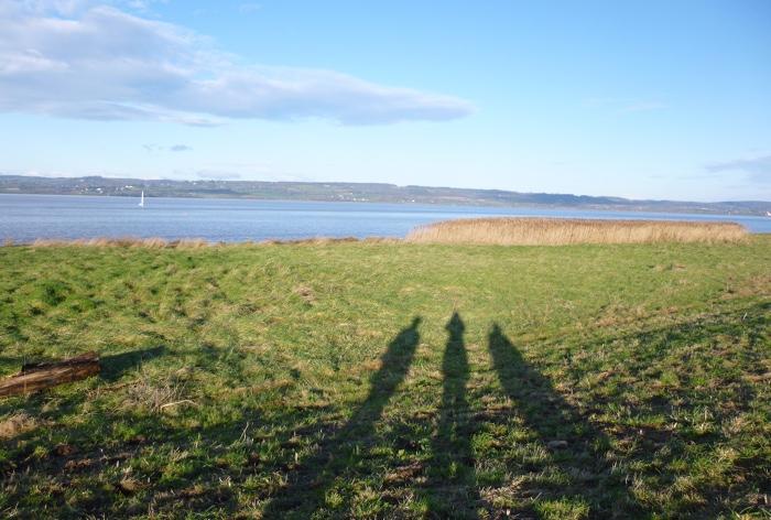 Severn River shadows cr Judy Darley