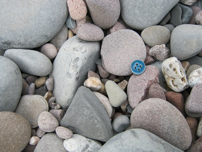 Button on Kilve Beach cr Judy Darley