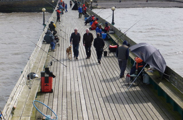 Fishing competition cr Judy Darley