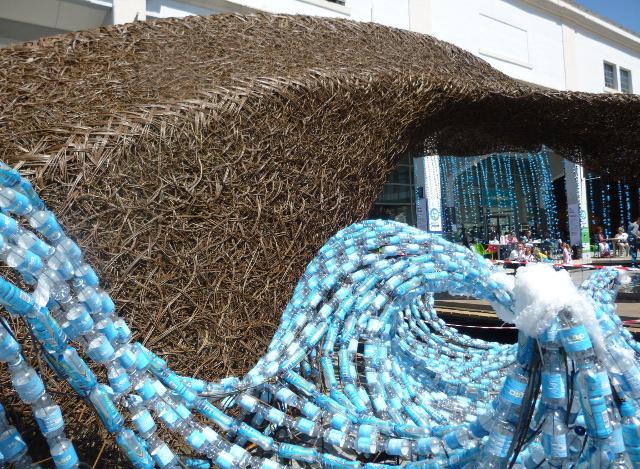 Bristol Whales cr Judy Darley