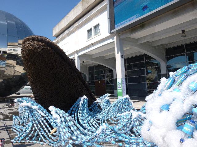 Bristol Whales2 cr Judy Darley