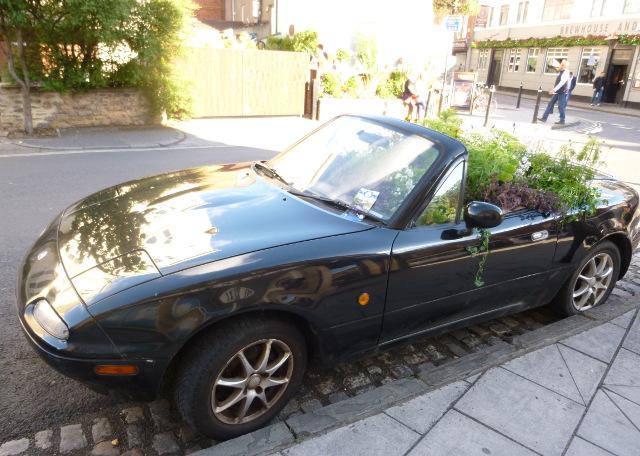 Blossom car, Bristol cr Judy Darley