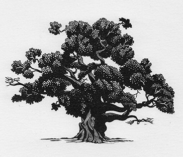 Domesday Oak by Ben Goodman