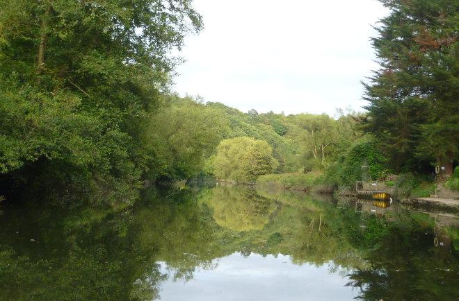 Bristol reflection cr Judy Darley