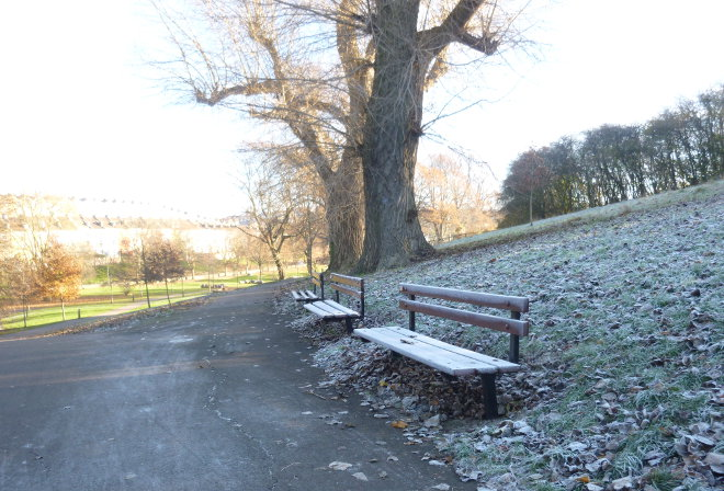 Three frosty benches by Judy Darley