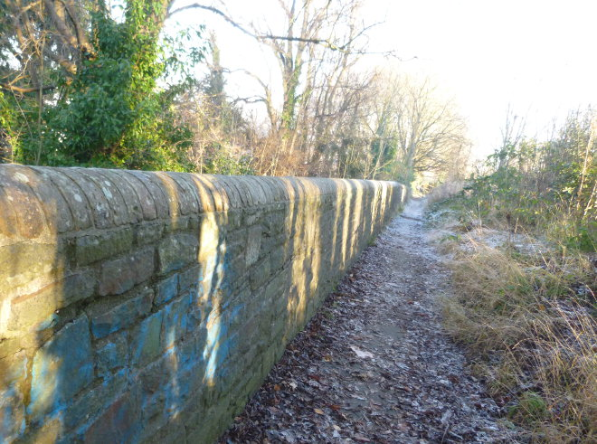 Arnos Vale path by Judy Darley