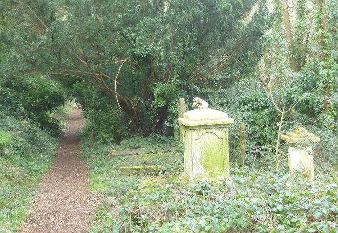 Grave companion cr Judy Darley
