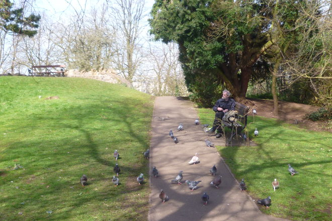 Old man and pigeons by Judy Darley