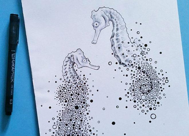 Seahorses by Cai Burton