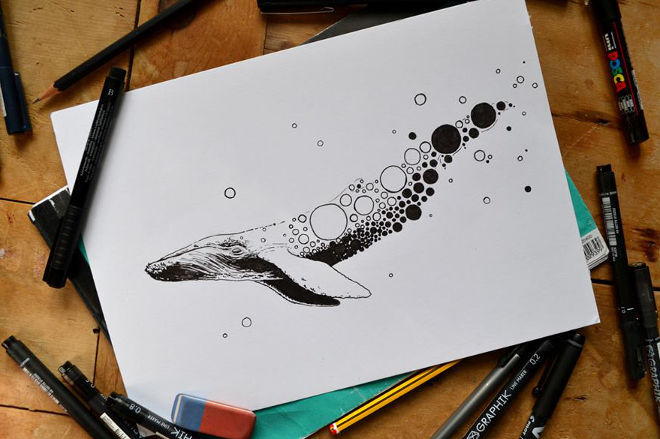 Whale by Cai Burton