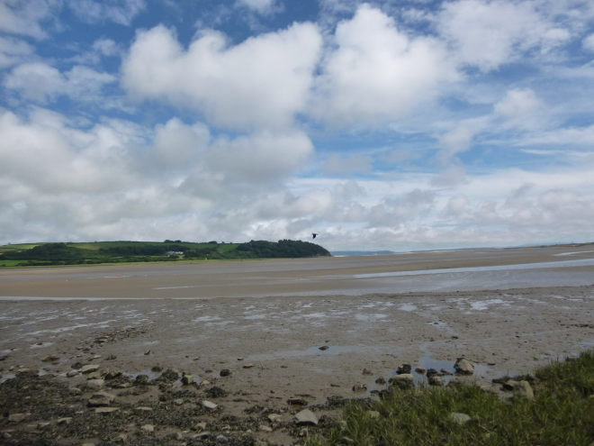 Flying in Laugharne by Judy Darley