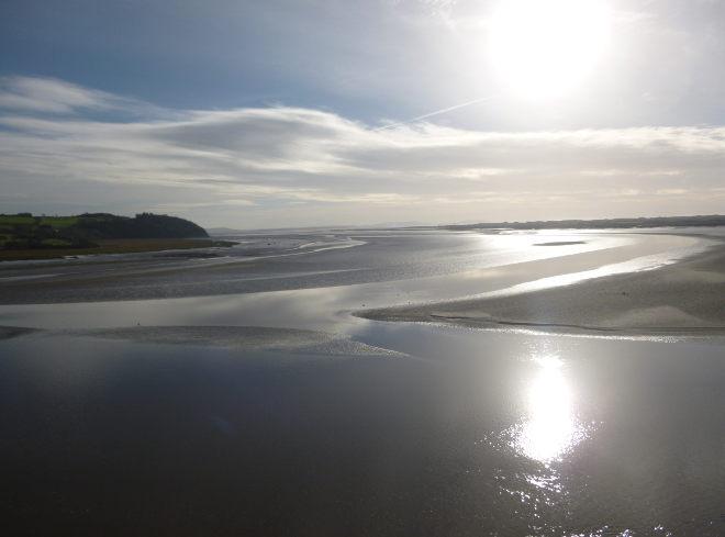 Dylan walk estuary serenity