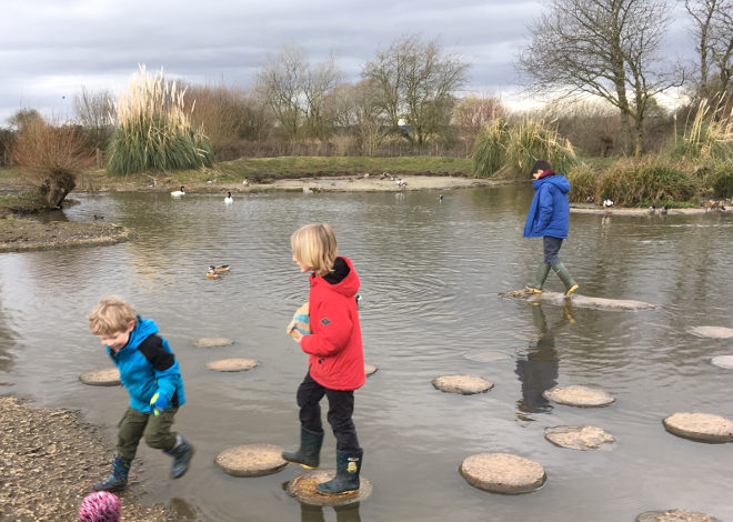 Stepping stones cr Judy Darley