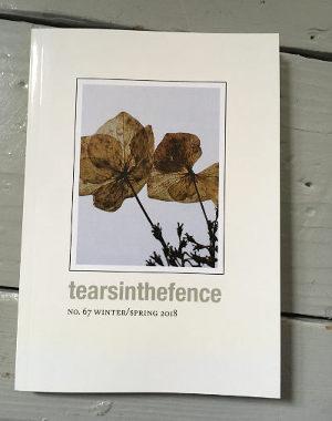 TearsInTheFence67