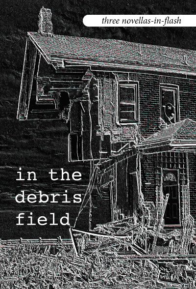 in-the-debris-field