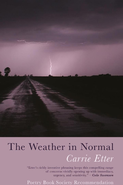 The Weather In Normal cover
