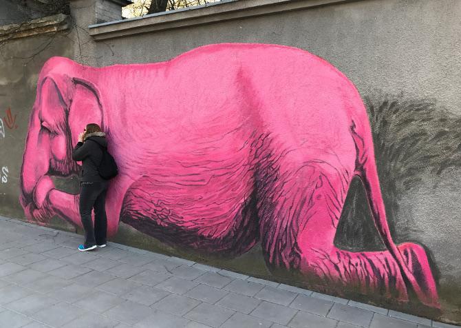 Pink Elephant Kaunas Lithuania. pic by Judy Darley