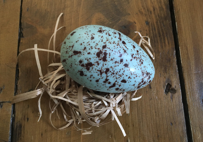 White chocolate albatross egg_photo by Judy Darley