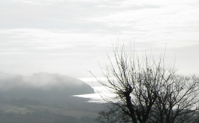 Taf Estuary, mist photo by Judy Darley