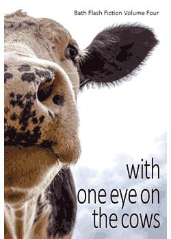 with-one-eye-on-the-cows