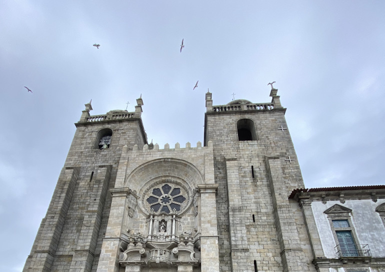 Seagulls above Porto Cathedral1 by James Hainsworth