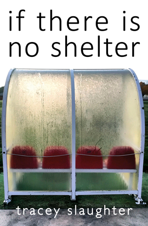 if there is no shelter book cover showing seats in a bus shelter.