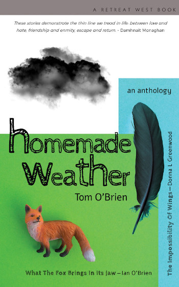 Homemade Weather book cover